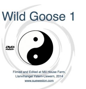 WildGooseCover copy